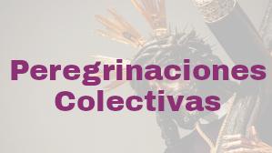 Peregrianciones colectivas